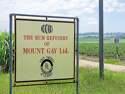 NUVO Magazine: Mount Gay Rum