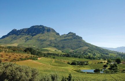 NUVO Magazine: Wines Of South Africa