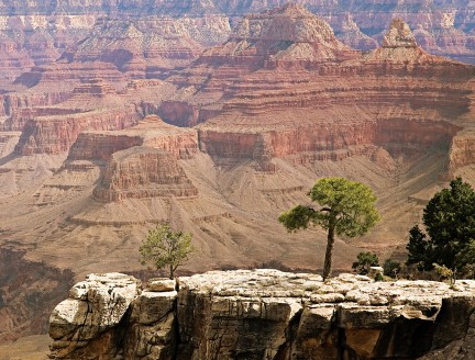 NUVO Magazine: Arizona, The Grand Canyon State