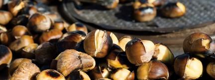 NUVO Magazine: Chestnuts