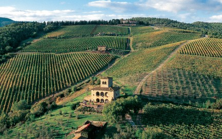 NUVO Magazine: The Wines Of Tuscany