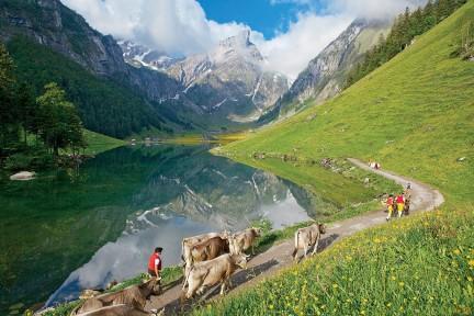 NUVO Magazine: Slowing Down in Switzerland