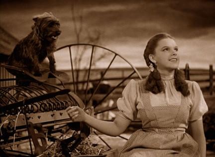 NUVO Daily Edit: Awards Season, Judy Garland