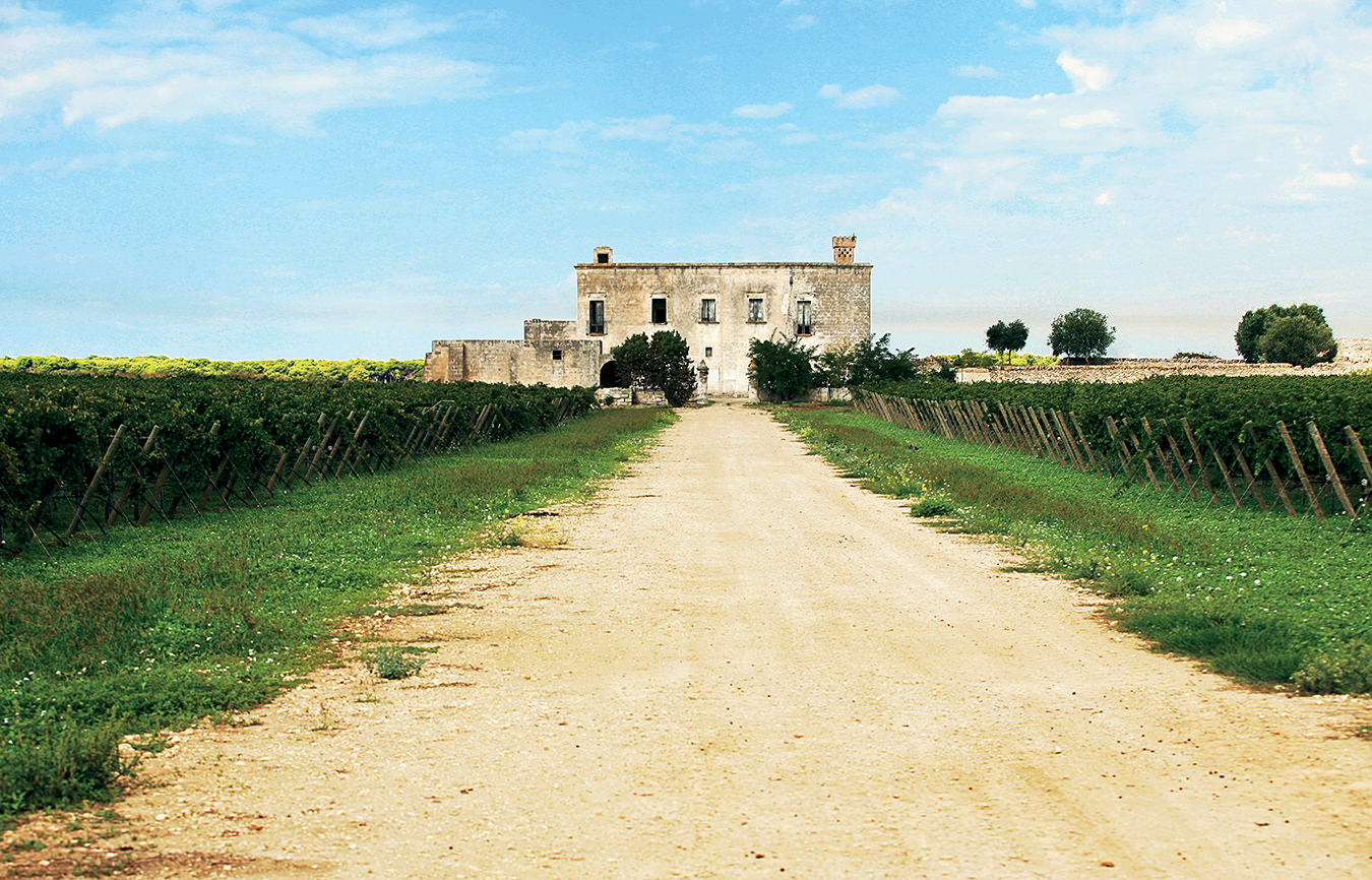 NUVO Summer 2014: Wines of Puglia
