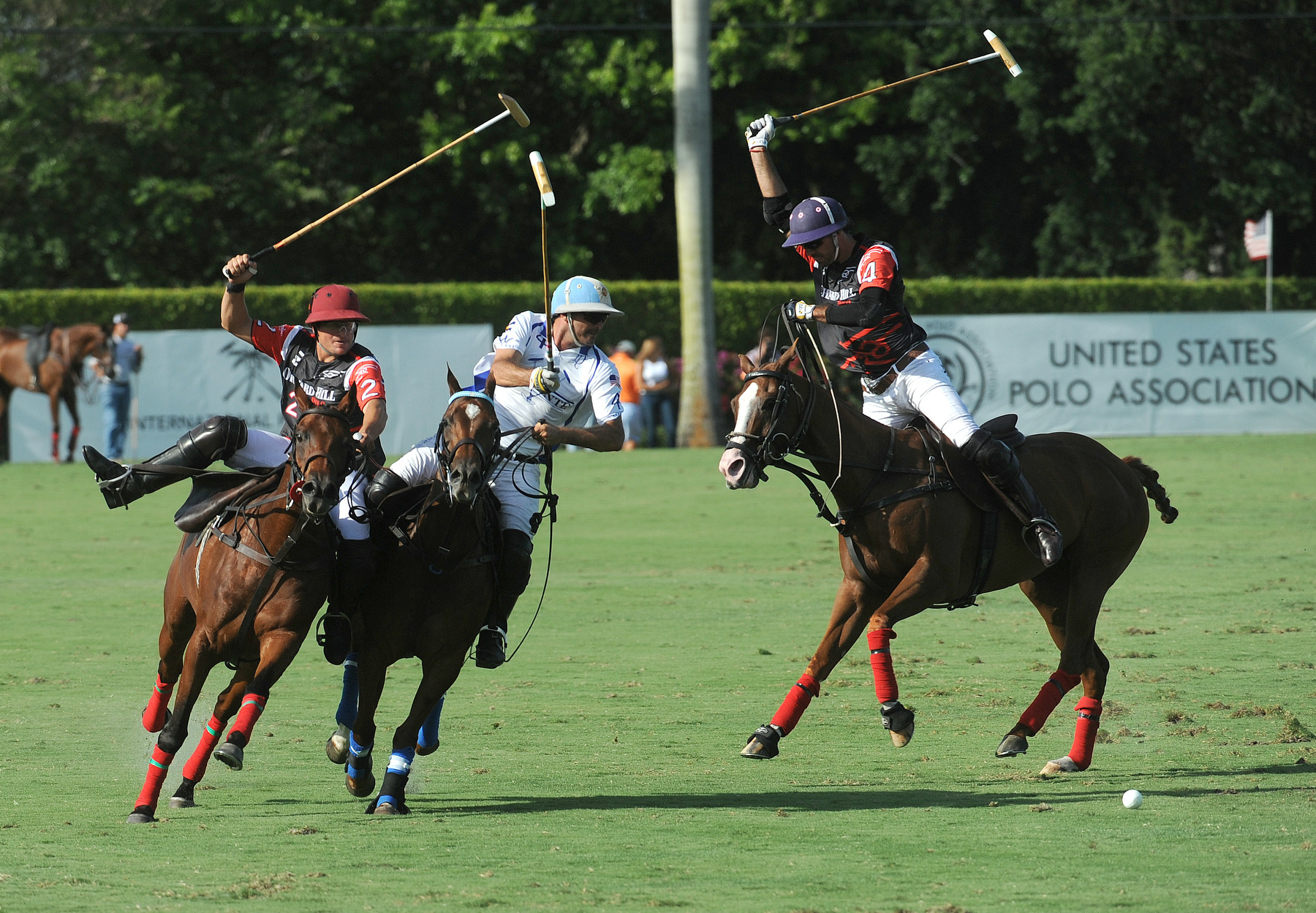 NUVO Daily Edit: The U.S. Open Polo Championship Final in Florida