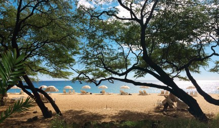 NUVO Winter 2015: Hawaii's Secret Is Out, Sentimental Traveller