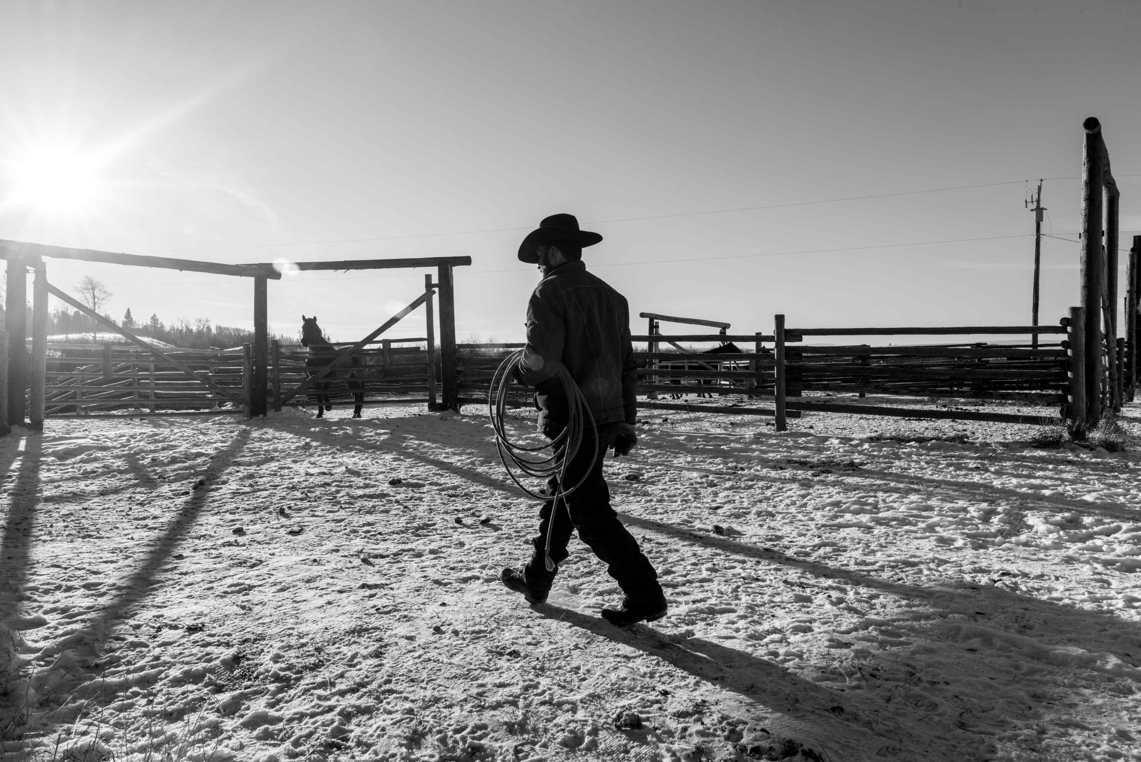 The Last Cowboys of Canada, Daily Edit, Luis Fabini