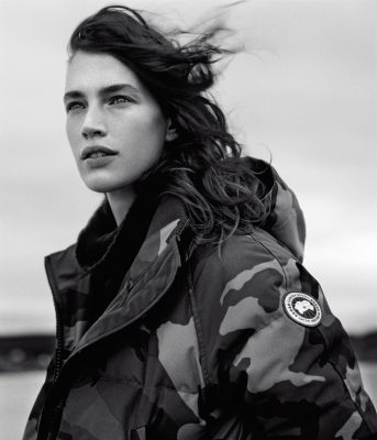 Autumn 2016, Of Note, Canada Goose