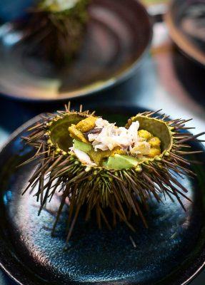 Savouring Sea Urchin