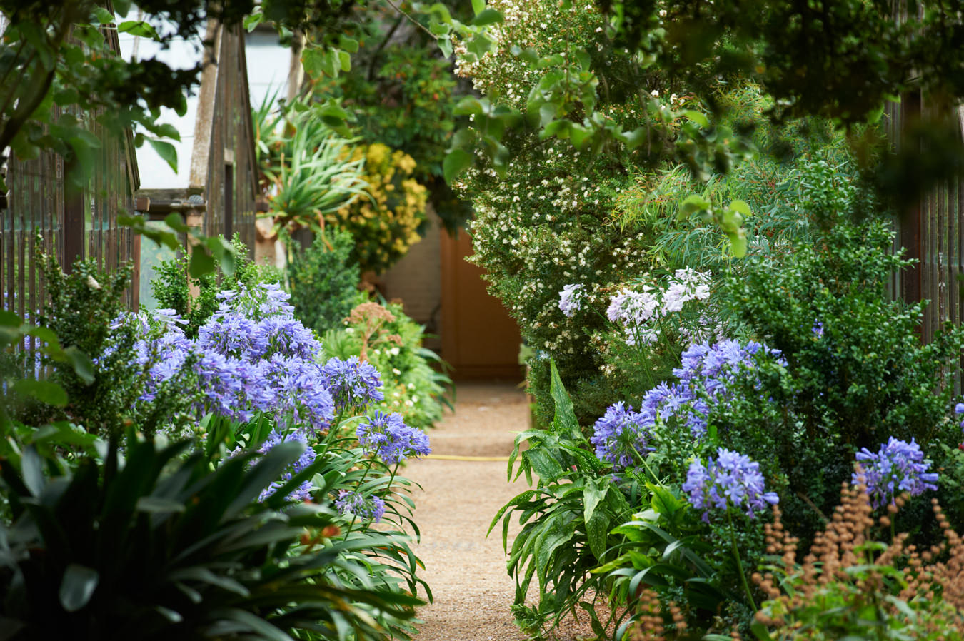 London's Chelsea Physic Garden | NUVO