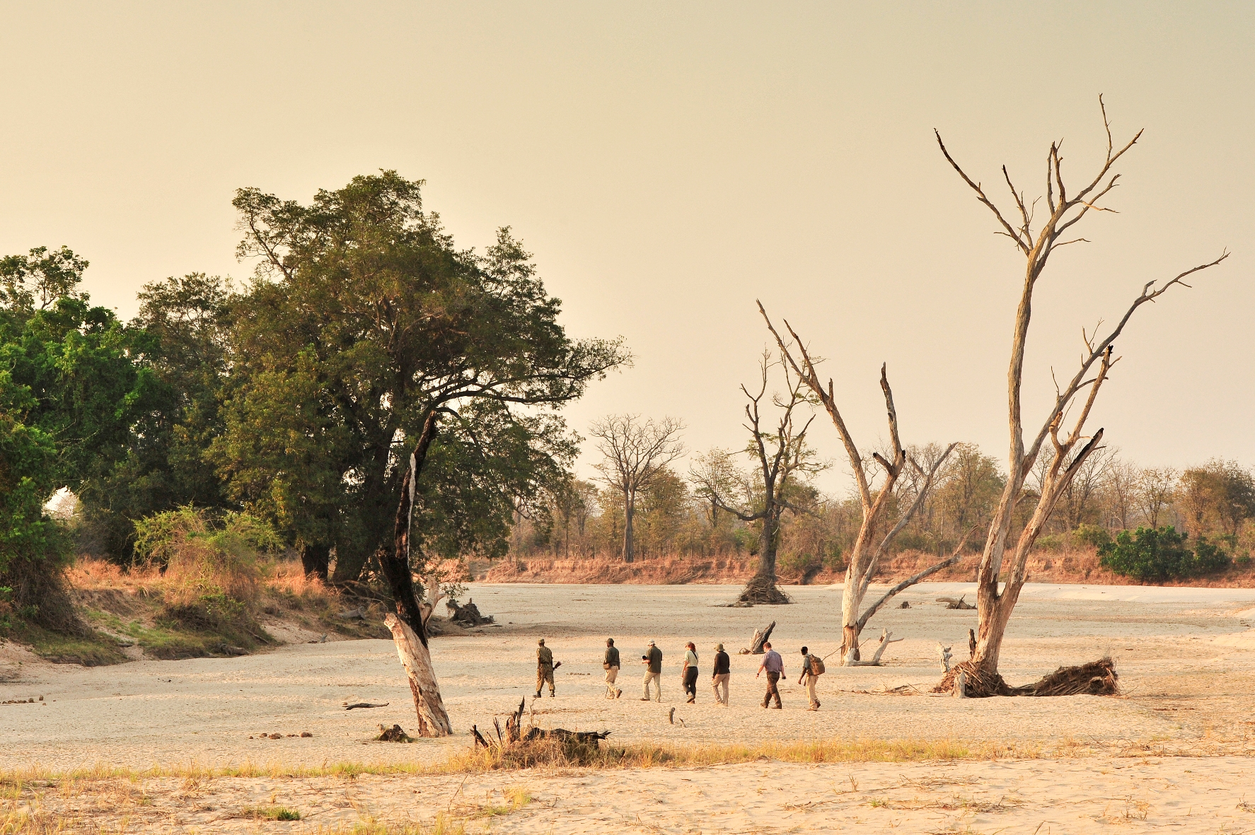 Walking Safaris in Zambia, Daily Edit