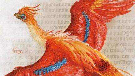 Harry Potter at the British Library