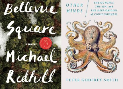 Just Our Type Winter Reads, FYI Books, Spring 2018