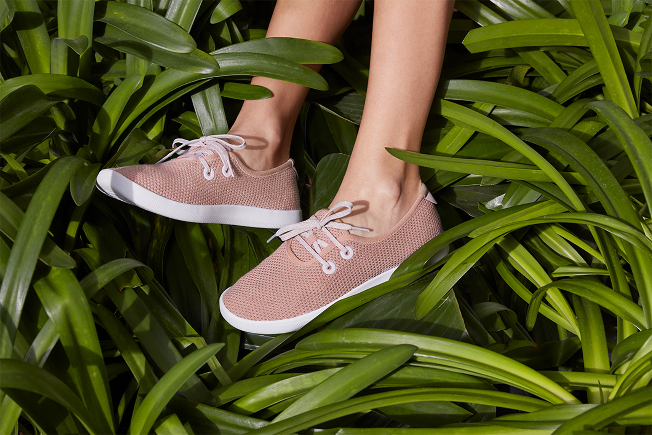 Allbirds shoes NUVO